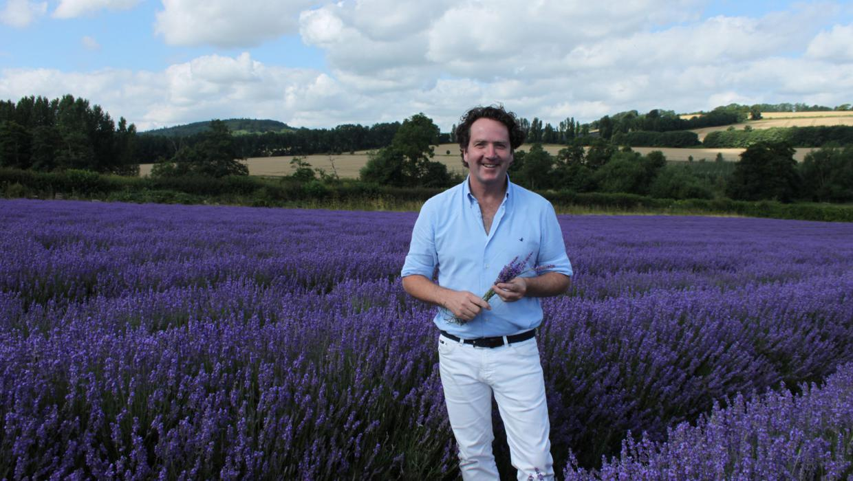 Diarmuid Gavin Add Fragrance And Colour To Your Garden This Summer With Lavender Independent Ie