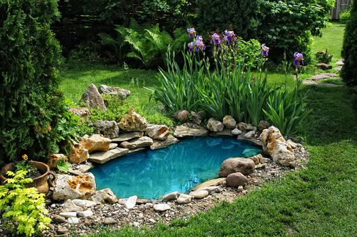 Garden Pond - a small body of water can brighten up your garden.