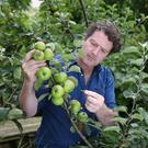 Diarmuid Gavin at work in his mini orchard at his home in Wicklow. Photo: Fran Veale