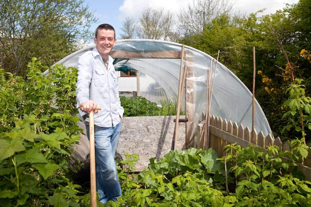 How To Grow Fruit And Vegetables In Your Family Garden Independent Ie