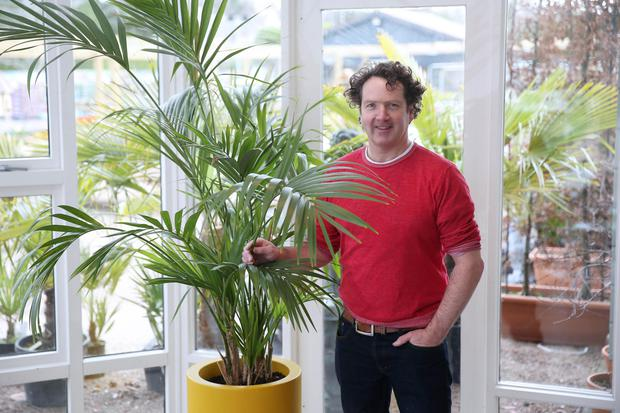 Diarmuid Gavin: conservatories are at the centre of craft gardening. Photo: Fran Veale