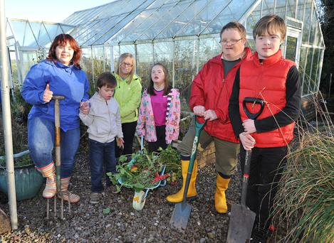Seeds of change: Down Syndrome Cork sees gardening as a tool for empowerment