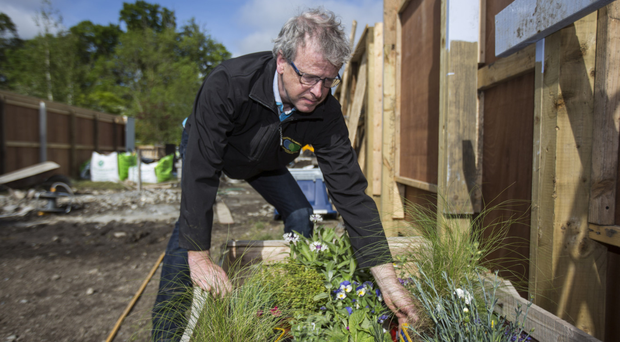 Growth industry: Clive Jones working on the Moments In Time garden ahead of Bloom 2018. Photo: Mark Condren