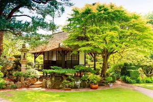 Japanese Gardens at The National Stud and Gardens