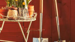 Every gardener should have the basic tools