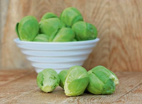 A good, healthy plant should yield 2kg of sprouts – that's the goal