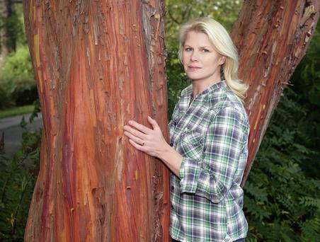 Your personality plays a part in finding the right tree, accoring to Marie Staunton
