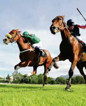 Racing in Killarney is a local attraction