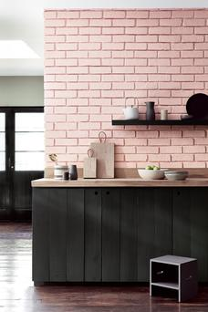 Combos of pink and green were frontrunners at this year's Salone del Mobile proving people are getting braver with colour. Confetti Pink and Lamp Black by Little Greene are seen here, teamed with dark green cabinetry; littlegreene.ie