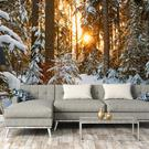Winter Wonderland wallpaper from Wallsauce