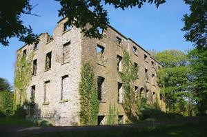 The ruins of the old Warrensgrove house