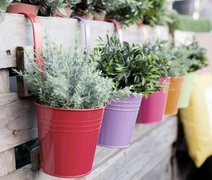 Fence hanging pots in tin, €4 each, Harvey Norman