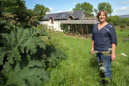 Artist and teacher Jo Lewis outside her eco-friendly home on 13 acres. She and her partner grow timber for fuel, and all their own vegetables. Mike and their three sons are vegan, while Jo is vegetarian. Photo: Tony Gavin