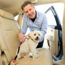 Buckle up: Luke Griffin pictured with his dog Alfie and the safety belt for dogs he uses while on the move. Photo: Gerry Mooney