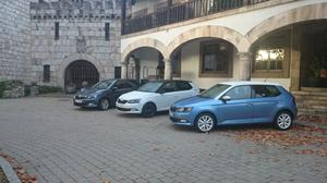 Some of the Fabia group ready to go