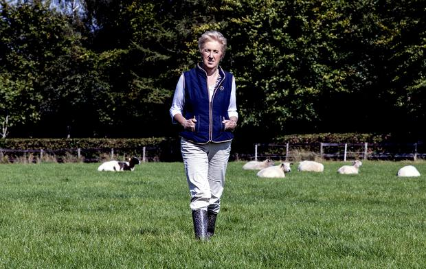 Mary Fitzgerald on the farm at Fitzgerald Woodlands House Hotel. Picture: Keith Wiseman