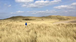 'My son Rory wanders through the sand dunes of Strandhill, Co Sligo - I love the Serengeti-type feel that the lush marram grass evokes,' writes @conneally on Twitter. Photo: Twitter / @conneally