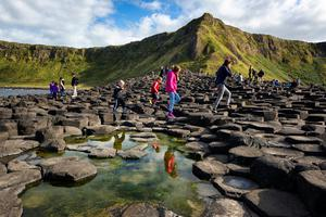 Giants Causeway, Co. Antrim. Photo: Getty
