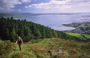 Barnavave Loop in Carlingford, Co Louth