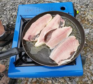 """""""One fine Donegal morning last August, my husband Pádraic arrived back triumphant from a successful early hours rock-fishing session,"""" says Gráinne Hamrock. """"Within an hour of being caught, there they were, iridescent, opalescent-skinned mackerel, sizzling on the pan outside our camper van..."""""""
