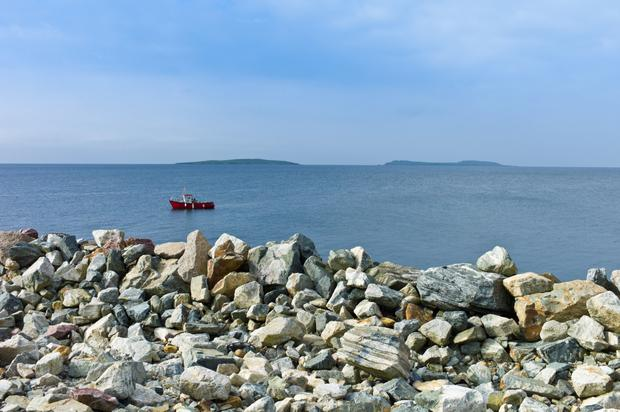 The Saltee Islands. Wexford in Ireland's sunny south east.