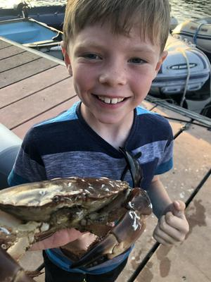"""""""Seeing my son's face when he caught this beauty in Schull with a simple crab line and piece of rasher..."""" Photo: Aaron Mansworth"""