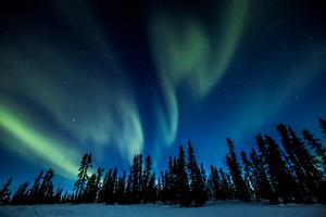 Northern Lights in the Yukon. Photo: Canada Tourism Commission