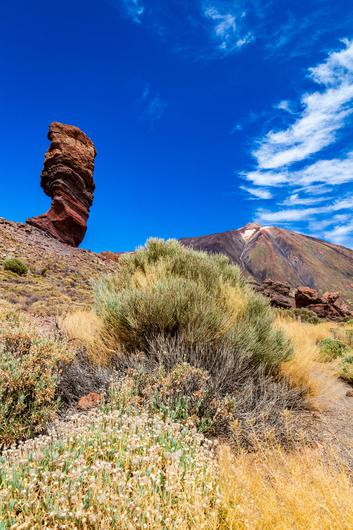 Trekking Tenerife: The iconic Stone Tree formation with Mount Teide