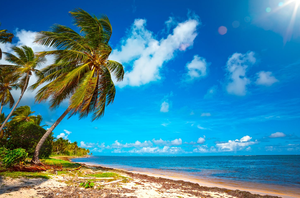 Jamaica: New to the brochures for 2016. Photo: Deposit