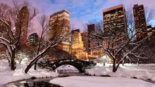 Winter in Central Park, New York City. Photo: Getty