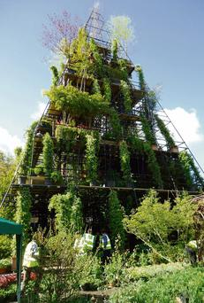 There is always plenty to interest visitors to the Chelsea Flower Show, for instance, last year's 'Magical Tower Garden', from Diarmuid Gavin, was an 80ft high, seven-storey, pyramid with a lift running up the centre