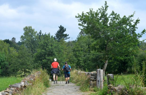 Walking the Camino, final stages of the French Way.