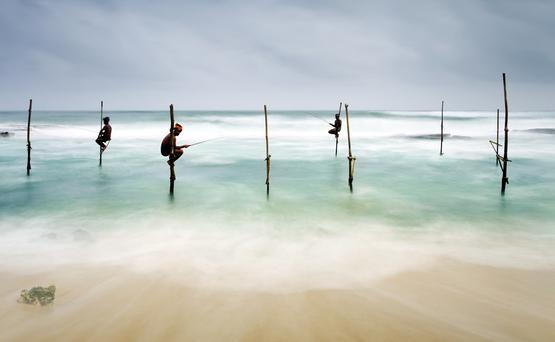 Stilt fishing in Koggala near Galle, Sri Lanka