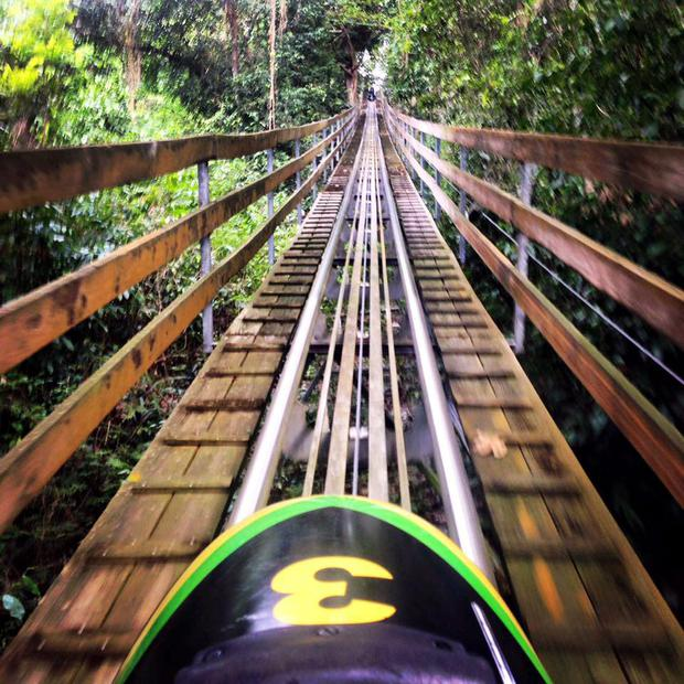 Jamaica offers Cool Runnings-themed toboggan rides.
