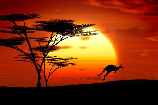 A jumping kangoroo at sunset. Photo: Deposit