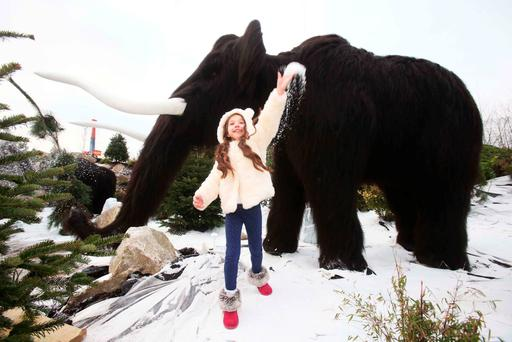 Malena Behan (aged 7 from Palmerstown) got up close to some mighty megafauna in the new 'Ice Valley' at Tayto Park. Photo: Leon Farrell/photocall Ireland.