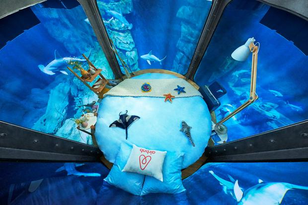 Airbnb's first underwater bedroom, at the Aquarium de Paris