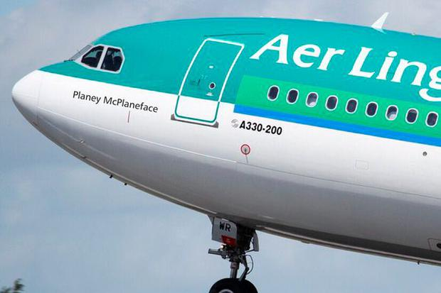 Planey McPlaneface: Aer Lingus's hat-tip to the celebrated Internet boat.