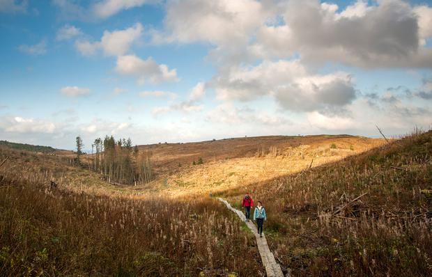 The Cavan Burren, Ireland's ancient East. Photo: Tony Pleavin/Fáilte Ireland
