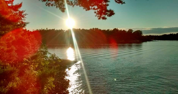 Sunlight in the Stockholm archipelago. Photo: Des FitzGerald.