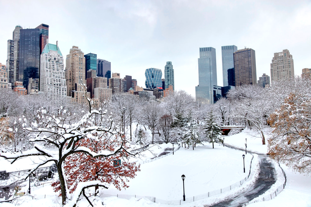 Winter in Central Park. Photo: Getty