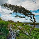Connemara, Wild Atlantic Way. Photo: Big Smoke/Fáilte Ireland