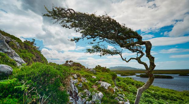 Savage Beauty: New tourism strategy shoots for 'true essence' of Aran Islands and Connemara