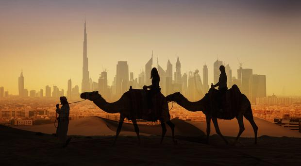 Dubai opens €9 million hospital - exclusively for camels