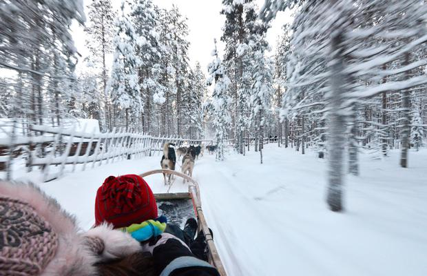 Husky sledding in Lapland. Photo: Pól Ó Conghaile