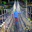 Emma O'Connor (7), a Pupil from Filemore National School, Co Kerry,tries 'The Skywalk' - Ireland's Longest Rope Bridge, at Kells Bay house and Gardens, on the Skellig Coast, and Wild Atlantic Way, Co.Kerry. Photo: Valerie O'Sullivan