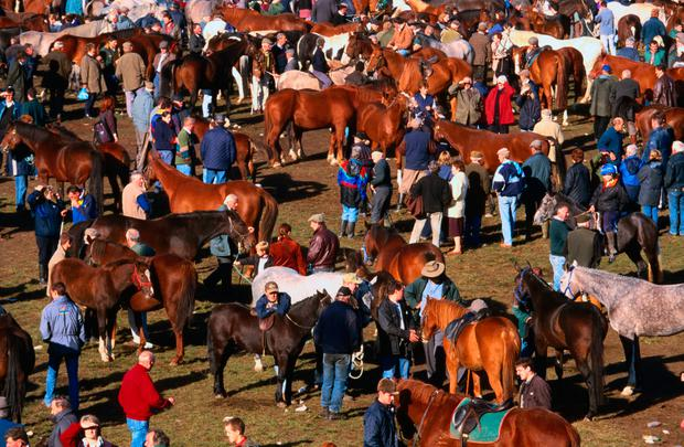 Ballinasloe Horse Fair, GETTY.jpg