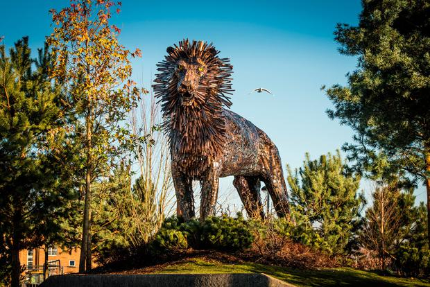 Aslan the lion at CS Lewis Square in Belfast. Photo: Discovernorthernireland.com
