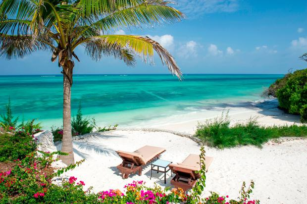 zanzibar spice of life on africa s paradise islands independent ie