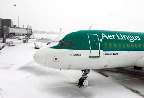 Aer Lingus has cancelled more than 50 flights from Dublin Airport today. Photo: Twitter/ShannonAirport